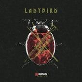 Ladybird by DMU Jazz Band
