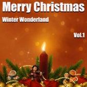 Merry Christmas - Winter Wonderland Vol.1 by Various Artists