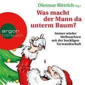 Was macht der Mann da unterm Baum? (Gekürzte Lesefassung) von Dietmar Bittrich