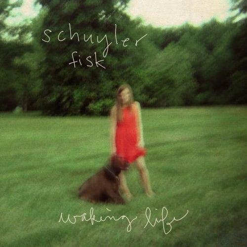 Waking Life - Single by Schuyler Fisk