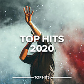 Top Hits 2020 fra Various Artists