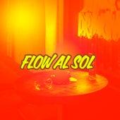Flow al sol de Various Artists