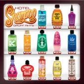 Hotel Shampoo by Gruff Rhys