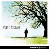 Stand In Awe by Vineyard Worship