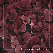 White Noise Relaxation by White Noise
