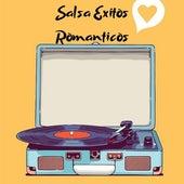 Salsa Éxitos Románticos de Various Artists