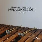 La Bamba de Marimba Orquesta Perla De Comitan