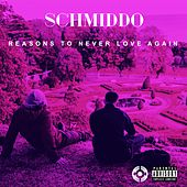 Reasons To Never Love Again de Schmiddo