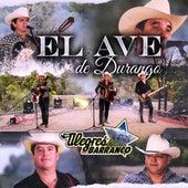 El Ave de Durango by Los Alegres Del Barranco