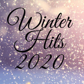 Winter Hits 2020 von Various Artists