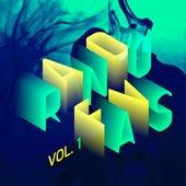 RandoFavs, Vol. 1 by Various Artists