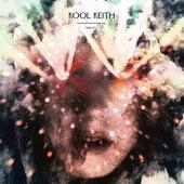 Drugs by Kool Keith
