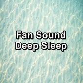 Fan Sound Deep Sleep by White Noise Meditation (1)