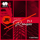 The Best of Remixes, Pt. 1 by Various Artists