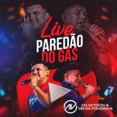 Live Paredão do Gás (Ao Vivo) von the anderson