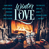 Smash Hits Winter Love by Various Artists