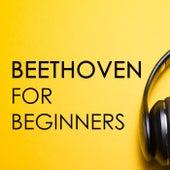Beethoven for beginners by Ludwig van Beethoven