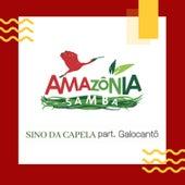 Sino da Capela von Amazônia Samba