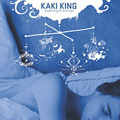 Dreaming of Revenge by Kaki King