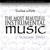 The Most Beautiful Instrumental Music Vol 2 by Various Artists