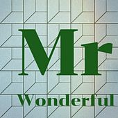 Mr Wonderful by Woody Guthrie, Brook Benton, Keely Smith, The Shirelles, Brownie McGhee, Mississippi Sheiks, Artie Shaw, John Barry, Lonnie Donegan, Mario Nascimbene