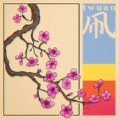 KITES von Twuan