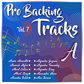 Pro Backing Tracks A, Vol.7 by Pop Music Workshop