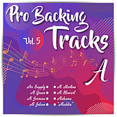 Pro Backing Tracks A Vol.5 by Pop Music Workshop