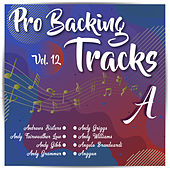 Pro Backing Tracks A, Vol.12 by Pop Music Workshop