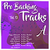 Pro Backing Tracks A, Vol.13 by Pop Music Workshop