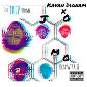 The Trip Home by Jomo Kenyatta II