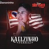 Danoninho de Kaelzinho Ferraz