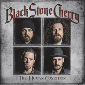 In Love With The Pain by Black Stone Cherry