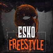 Freestyle by Esko