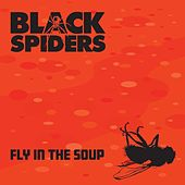 Fly in the Soup by Black Spiders