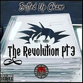 The Revolution, Pt. 3 by Buffed Up Chane