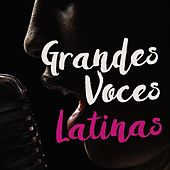 Grandes voces Latinas by Various Artists