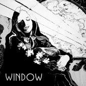 Window de The Window