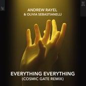Everything Everything (Cosmic Gate Remix) by Andrew Rayel