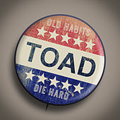 Old Habits Die Hard by Toad the Wet Sprocket