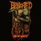 Stab the Weakest von Benighted