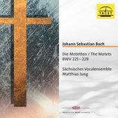 J.S. Bach: Motets, BWVV 225-229 von Sächsisches Vocalensemble