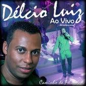 Caminho da Felicidade - Versão Estendida (Ao Vivo) de Delcio Luiz