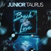 Back to Love von Junior Taurus