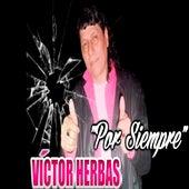 Por Siempre de Víctor Herbas