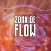 Zona de Flow de Various Artists