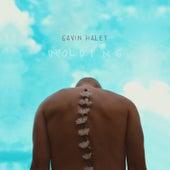 Unfolding by Gavin Haley