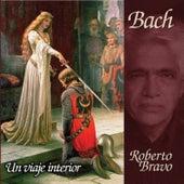 Un Viaje Interior de Roberto Bravo