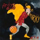 Christmas In April de Andrew Bird