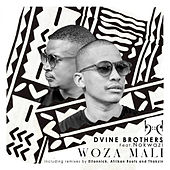 Woza Mali(Incl Eltonnick, Thakzin and Afrikan Roots Remixes) de Dvine Brothers